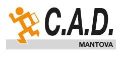 CAD MANTOVA - ha scelto Telematico Accise per la gestione telematica delle accise doganali